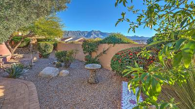 Tucson Single Family Home For Sale: 65723 E Rocky Path Drive