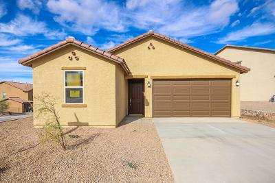 Vail Single Family Home For Sale: 10827 E Painted Mesa Place #Lot 239