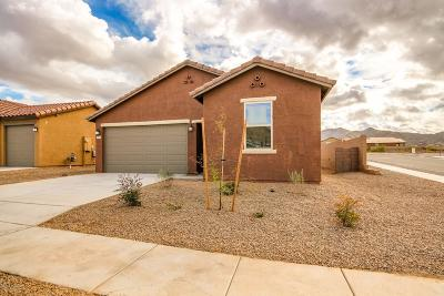 Vail Single Family Home For Sale: 10828 E Painted Mesa Place #Lot 234