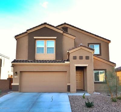 Pima County, Pinal County Single Family Home For Sale: 9139 W Blue Saguaro Street W