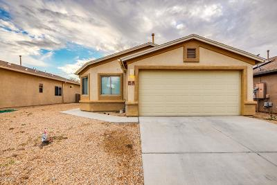Pima County Single Family Home For Sale: 7154 S Shipmans Tale Court