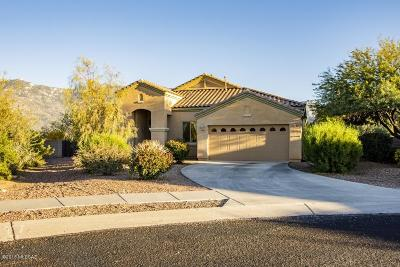 Tucson Single Family Home For Sale: 4066 E Rugged Lark Place