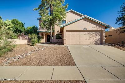 Pima County Single Family Home For Sale: 9330 N Broken Lance Drive