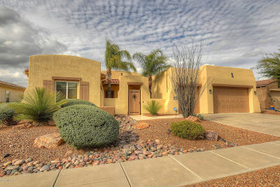 Pima County Single Family Home For Sale: 12661 N Rock Creek Road