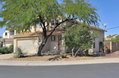 Pima County Single Family Home For Sale: 8575 N Winchester Creek Drive