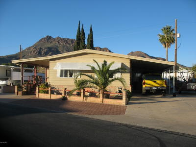 Pima County Manufactured Home For Sale: 6158 W Flying M Street