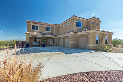 Pima County Single Family Home For Sale: 18180 S Golden Valley Drive