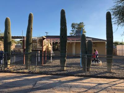 Tucson Single Family Home For Sale: 935 Calle Margarita