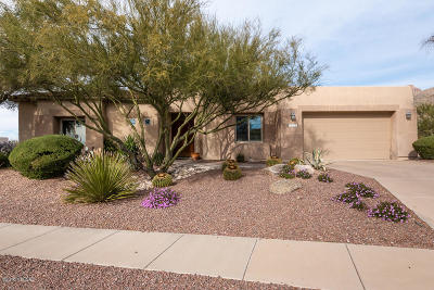 Tucson Single Family Home For Sale: 5015 N Coronado Vistas Place