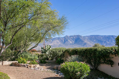 Tucson Single Family Home For Sale: 61667 E Border Rock Road