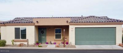Sahuarita Single Family Home For Sale: 15932 S Avenida Canica