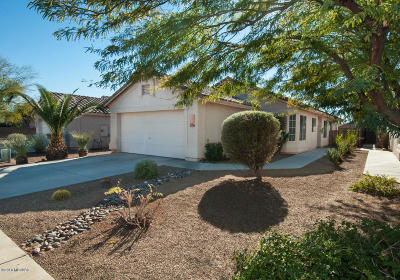 Pima County Single Family Home Active Contingent: 2617 W Catalina View Drive