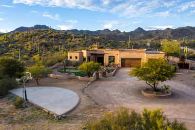 Tucson Single Family Home For Sale: 2726 Cougar Canyon Trail