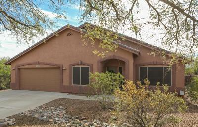 Tucson Single Family Home For Sale: 8248 W Circulo De Los Morteros