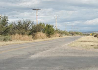 Cochise County Residential Lots & Land For Sale: 216.72 AC N Ocotillo Road