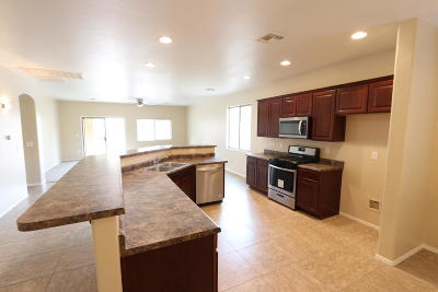 Pima County Single Family Home For Sale: 12719 N Belarus Drive