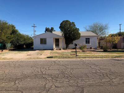Tucson Single Family Home For Sale: 2303 S Holly Stravenue