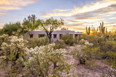 Pima County, Pinal County Single Family Home For Sale: 315 N Indian House Road