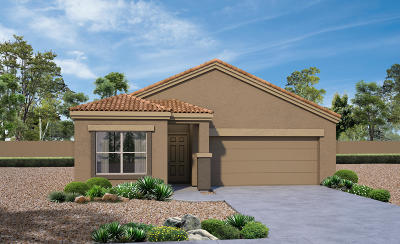 Pima County, Pinal County Single Family Home For Sale: 11694 W Fayes Glen Drive