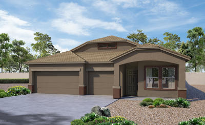 Marana Single Family Home For Sale: 11686 W Fayes Glen Drive