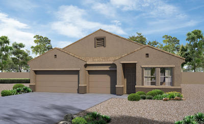 Pima County, Pinal County Single Family Home For Sale: 11681 W Fayes Glen Drive