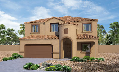 Pima County Single Family Home For Sale: 11689 W Fayes Glen Drive
