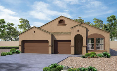 Pima County, Pinal County Single Family Home For Sale: 11706 W Fayes Glen Drive