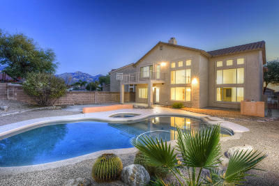 Oro Valley Single Family Home For Sale: 2379 E Vistoso Village Place