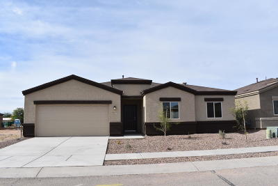 Tucson Single Family Home For Sale: 6220 S Blue Water Drive