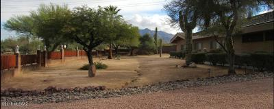 Tucson Single Family Home For Sale: 1415 W Maximilian Place