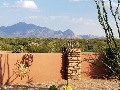 Pima County Single Family Home For Sale: 3207 S Corte Amarilla