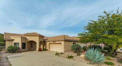 Tucson Single Family Home For Sale: 712 S Deer Bend Court