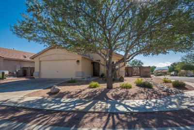 Marana Single Family Home For Sale: 5577 W Panther Butte Street