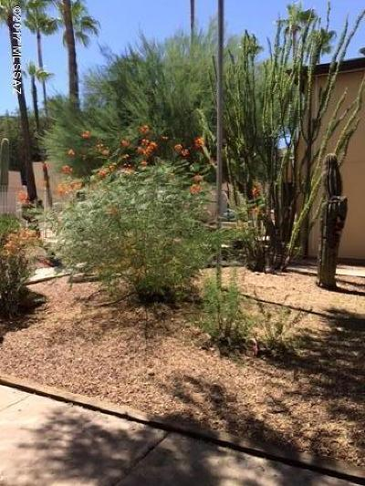 Pima County, Pinal County Condo For Sale: 1620 N Wilmot Road #E150