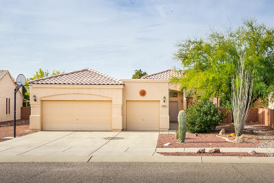 Pima County Single Family Home For Sale: 3419 W Elan Place