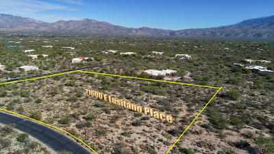 Residential Lots & Land For Sale: 11600 E Lusitano Place #10