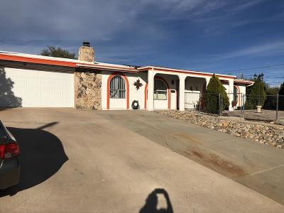 Rio Rico Single Family Home For Sale: 130 Camino San Xavier