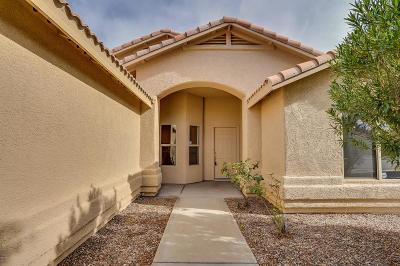Single Family Home For Sale: 565 S Vermilion Cliffs Avenue