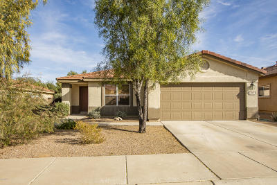 Pima County Single Family Home For Sale: 8288 N Stonehill Drive