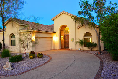 Tucson Single Family Home For Sale: 3595 W Deer Crossing Court