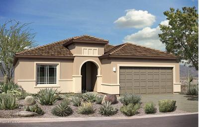 Vail AZ Single Family Home For Sale: $317,839