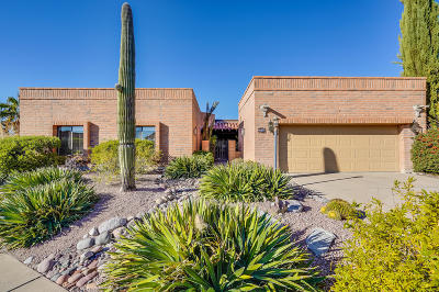 Tucson Single Family Home For Sale: 4381 N Camino Ferreo