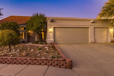 Tucson Single Family Home For Sale: 10595 E Barclay Park Loop