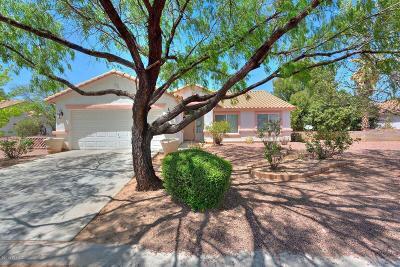 Rio Rico Single Family Home For Sale: 1190 Desert Dawn Drive