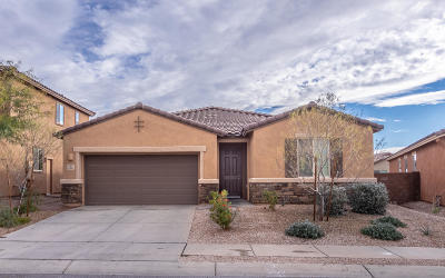 Single Family Home For Sale: 9486 S Horned Lizard Circle