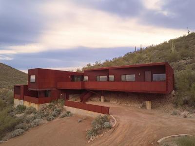 Tucson Single Family Home For Sale: 250 S Corte Tortuga Vista
