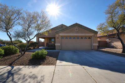 Marana Single Family Home Active Contingent: 11691 W Stone Hearth Street