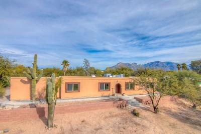 Tucson Single Family Home For Sale: 1660 W Rudasill Road