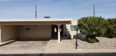 Tucson Single Family Home For Sale: 1054 N Caribe Avenue