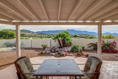 Tucson Single Family Home For Sale: 64751 E Catalina View Drive